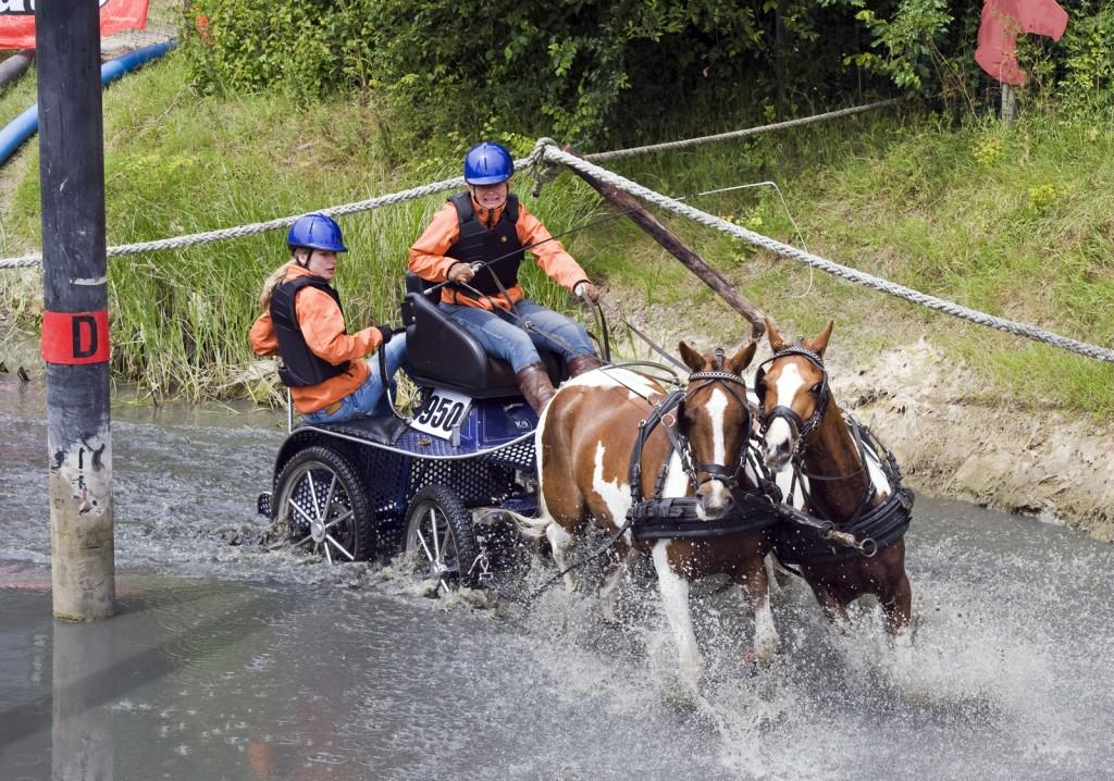 paardensport_menwedstrijd_Vrouwenpolder